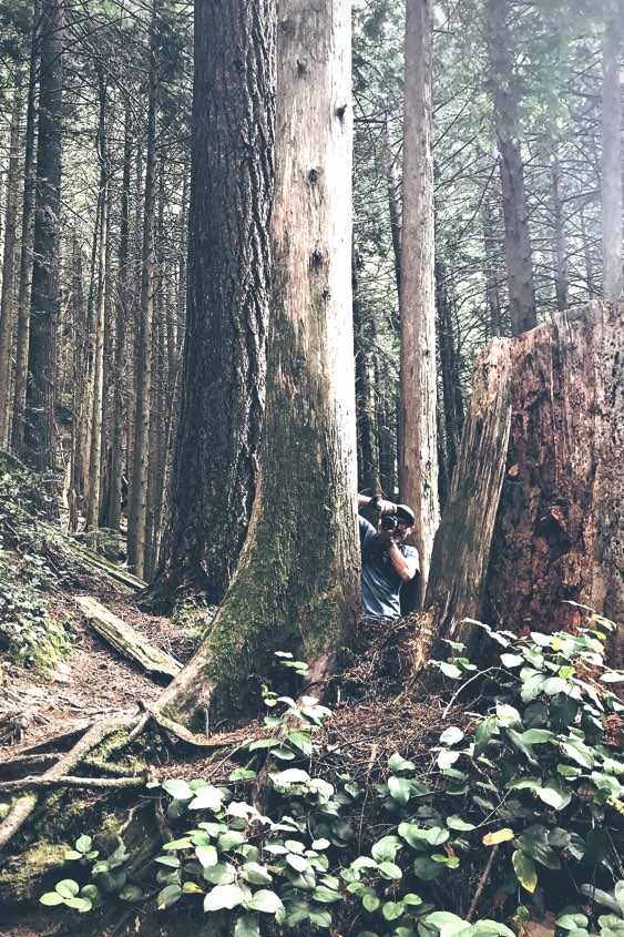 Jody Bailey taking a photo between two tall trees on the Grouse Grind in Vancouver BC.